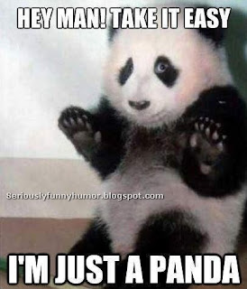 Hey man! Take it easy, I'm just a panda
