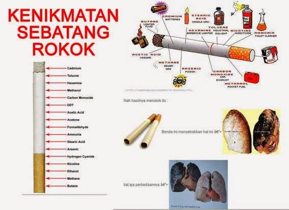 Kandungan Asap Rokok Kandungan Dalam Asap Rokok