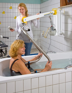 Handi-Move Wall Lift Image