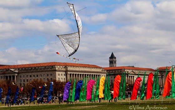 Kites flying during the Kite Festival at the National Mall