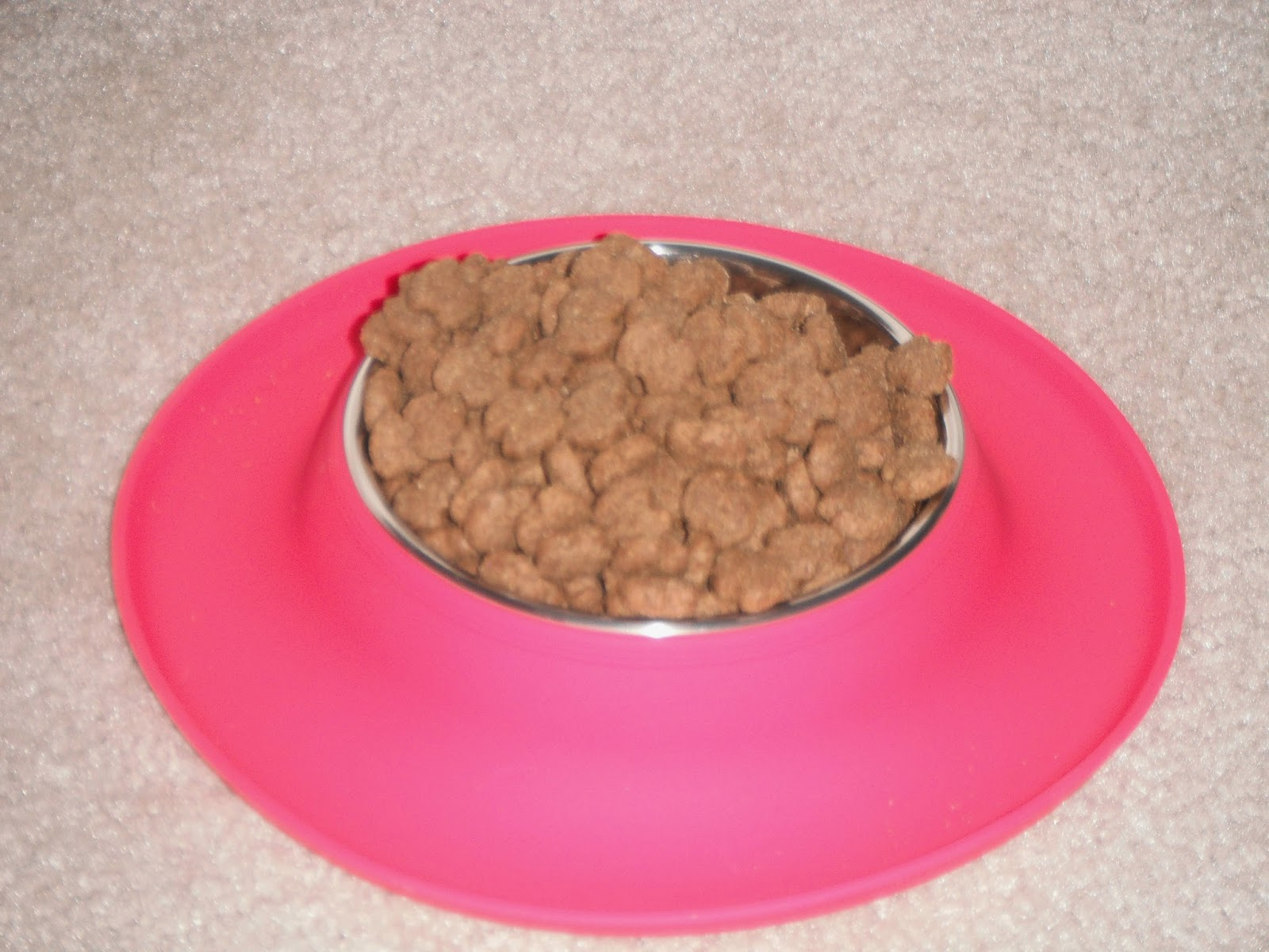both my dog and i really enjoy this dog feeding mat with bowl i appreciate the fact that the mat is made of silicone that way it wonu0027t slide along on my