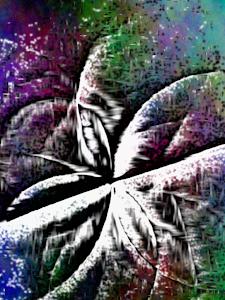 Flor em Crescimento