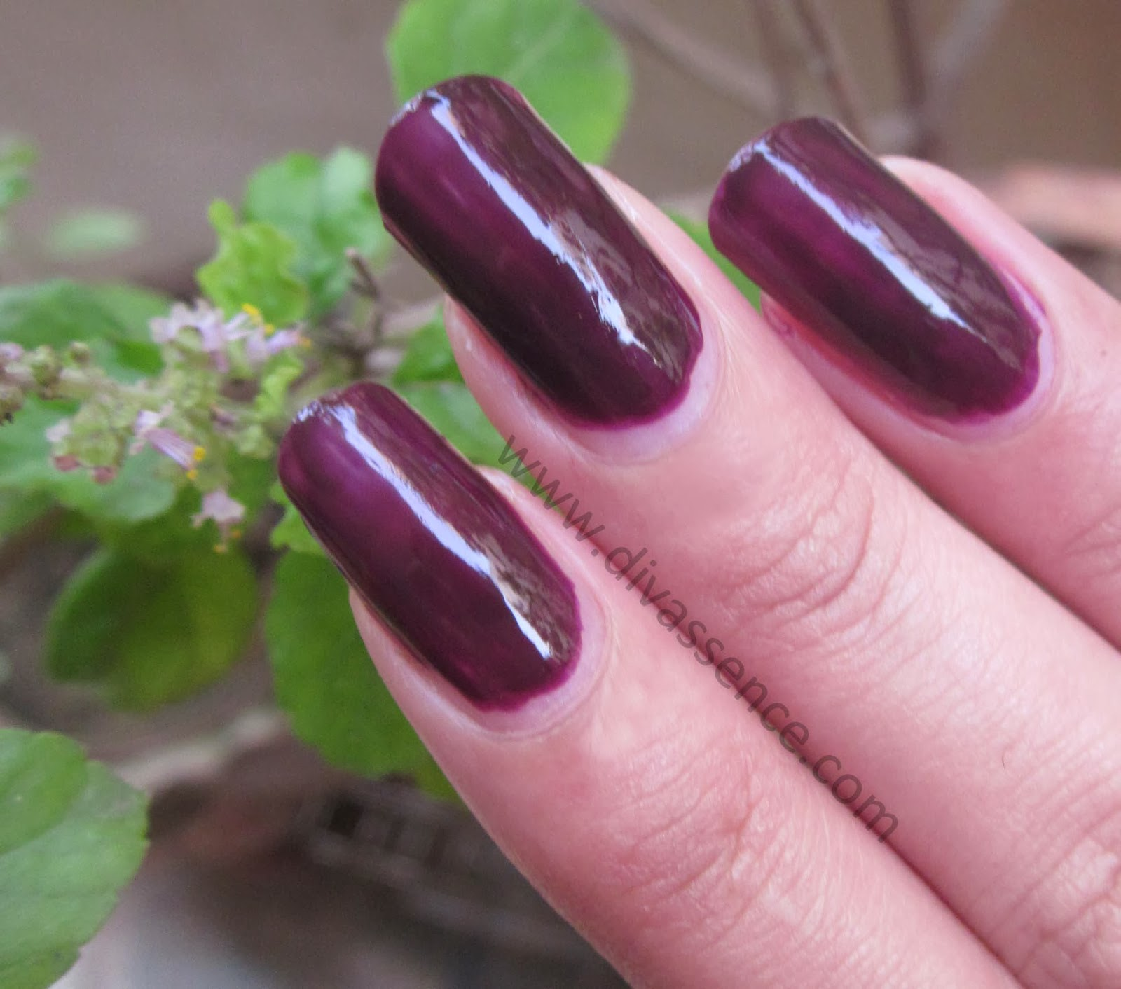 Maybelline Color Show Crazy Berry
