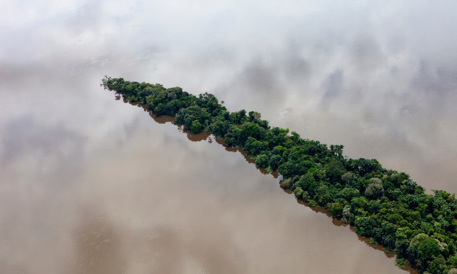 Photograph, Daniel Beltra: Para, Brazil. February 11, 2012. Aerials south of Santarem and along the road BR163. Rainforest in the Tapajos River.