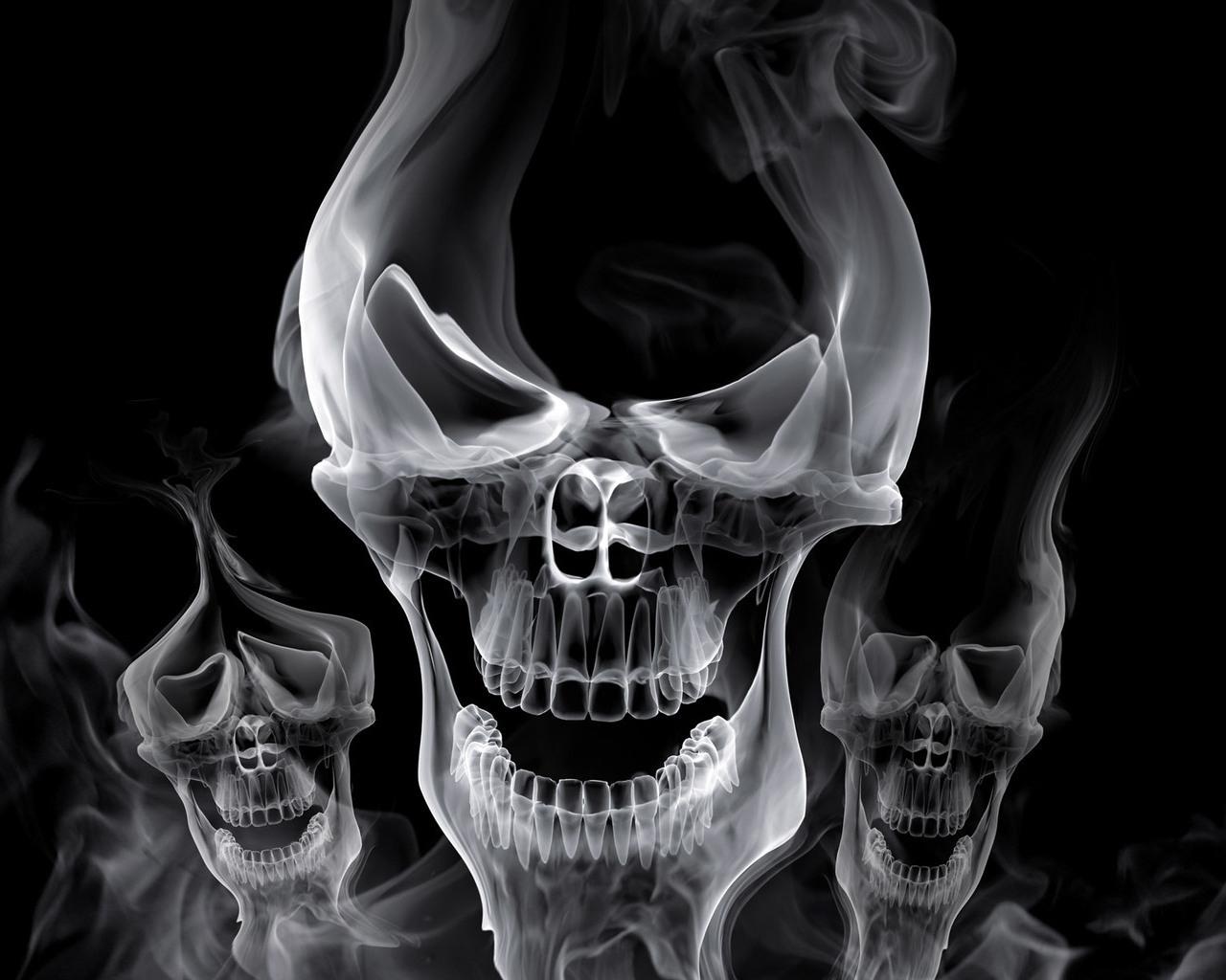 Skulls Wallpapers Abhi Wallpapers