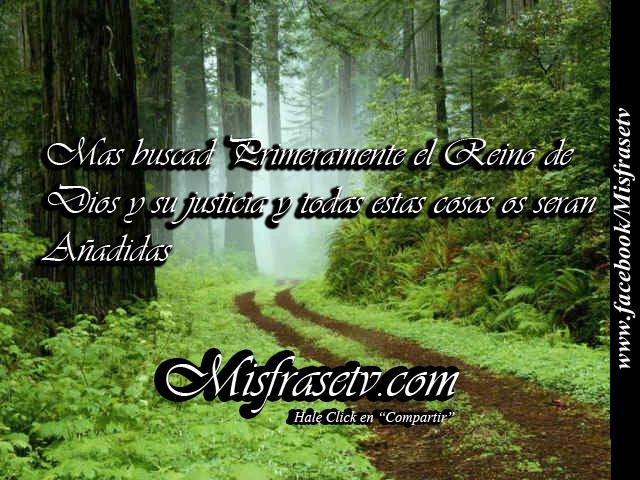Images : Frases De Pablo Neruda Frases Y Felicitaciones De