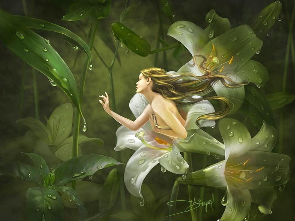BONNE SOIRÉE & BELLE NUIT A TOUT LE MONDE Fairy_flower_girl_Wallpaper_cl9fi