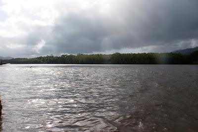 rio Daintree