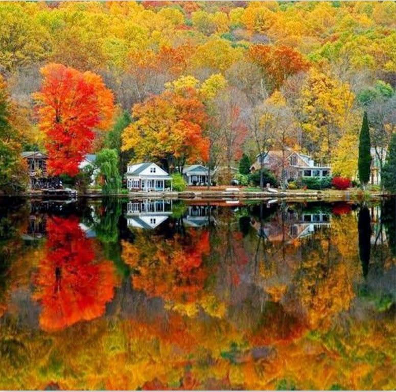 fotos-de-paisajes-reflejados-en-el-agua
