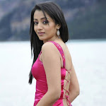 Trisha in Guard Movie Pink Dress Shoot Song  Photo Gallery