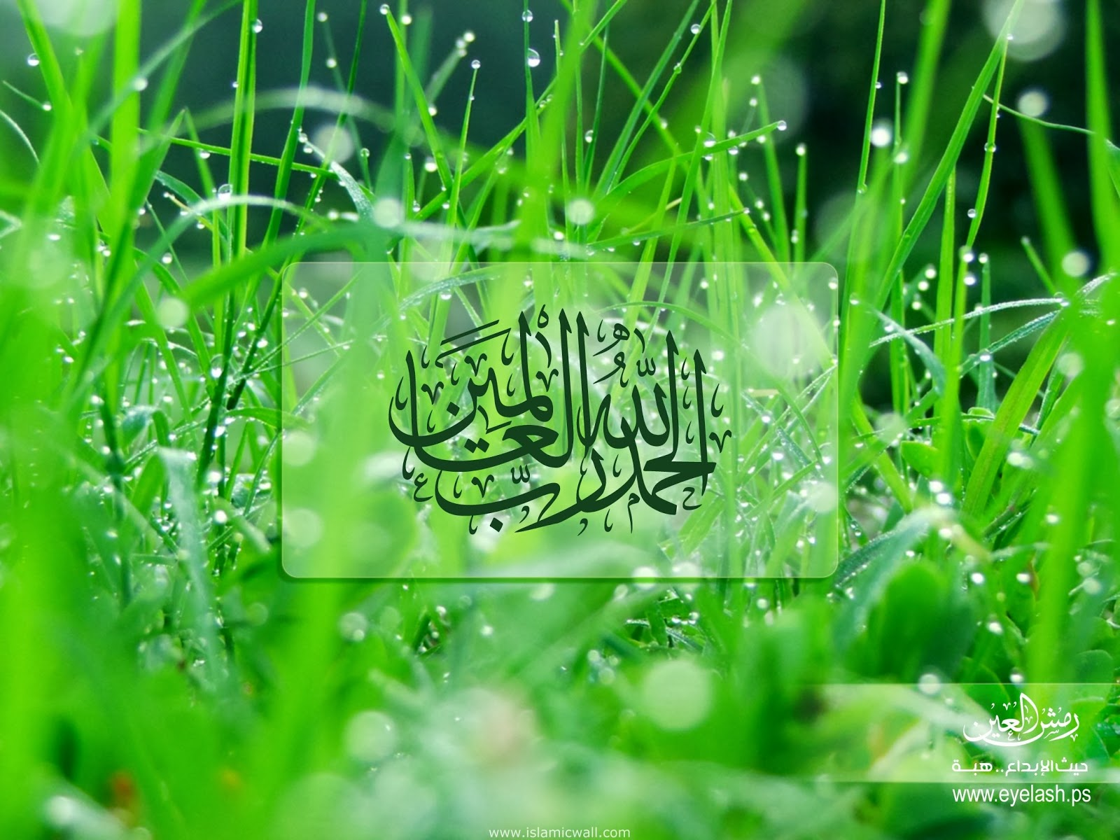 Wallpaper Islamic Informatin Site Wallpapers