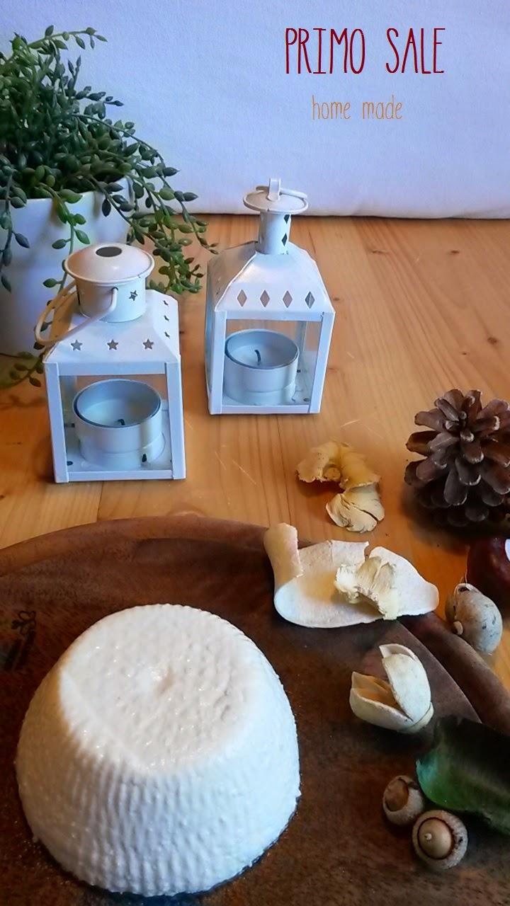 formaggio home made - primo sale fatto in casa