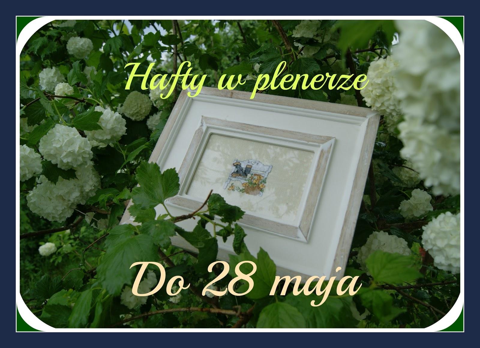 HAFTY W PLENERZE