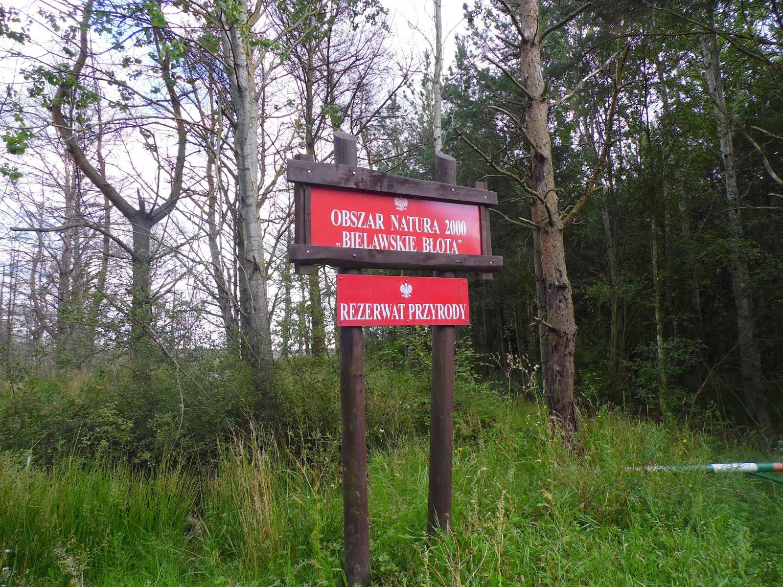 Tablica Informacyjna rezerwatu przyrody Bielawskie Błota - obszar Natura 2000