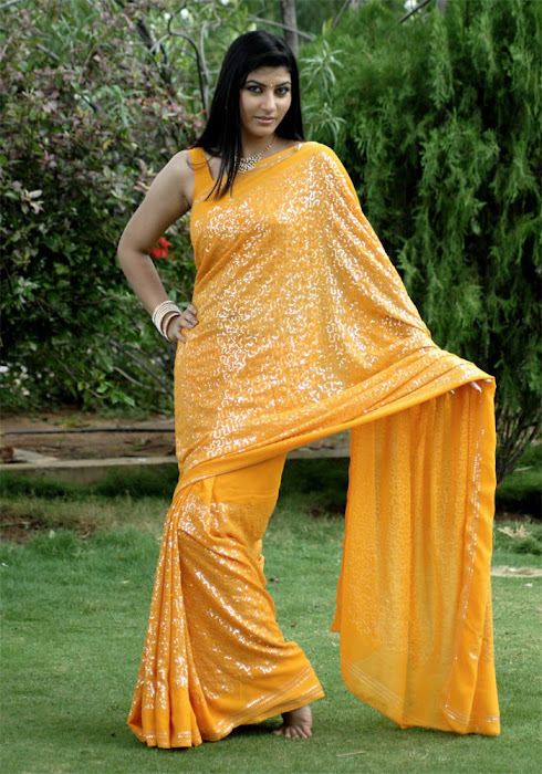 sarah sharma in saree tollywood spicy actress pics