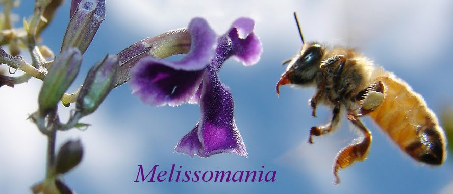 Melissomania