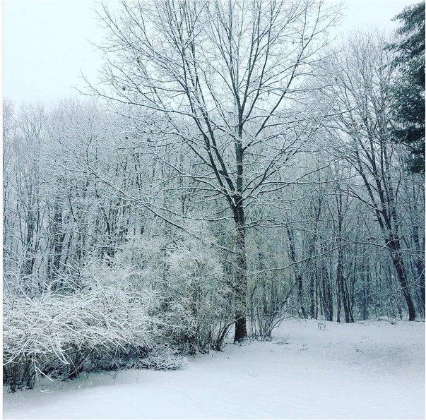 Life in Maine