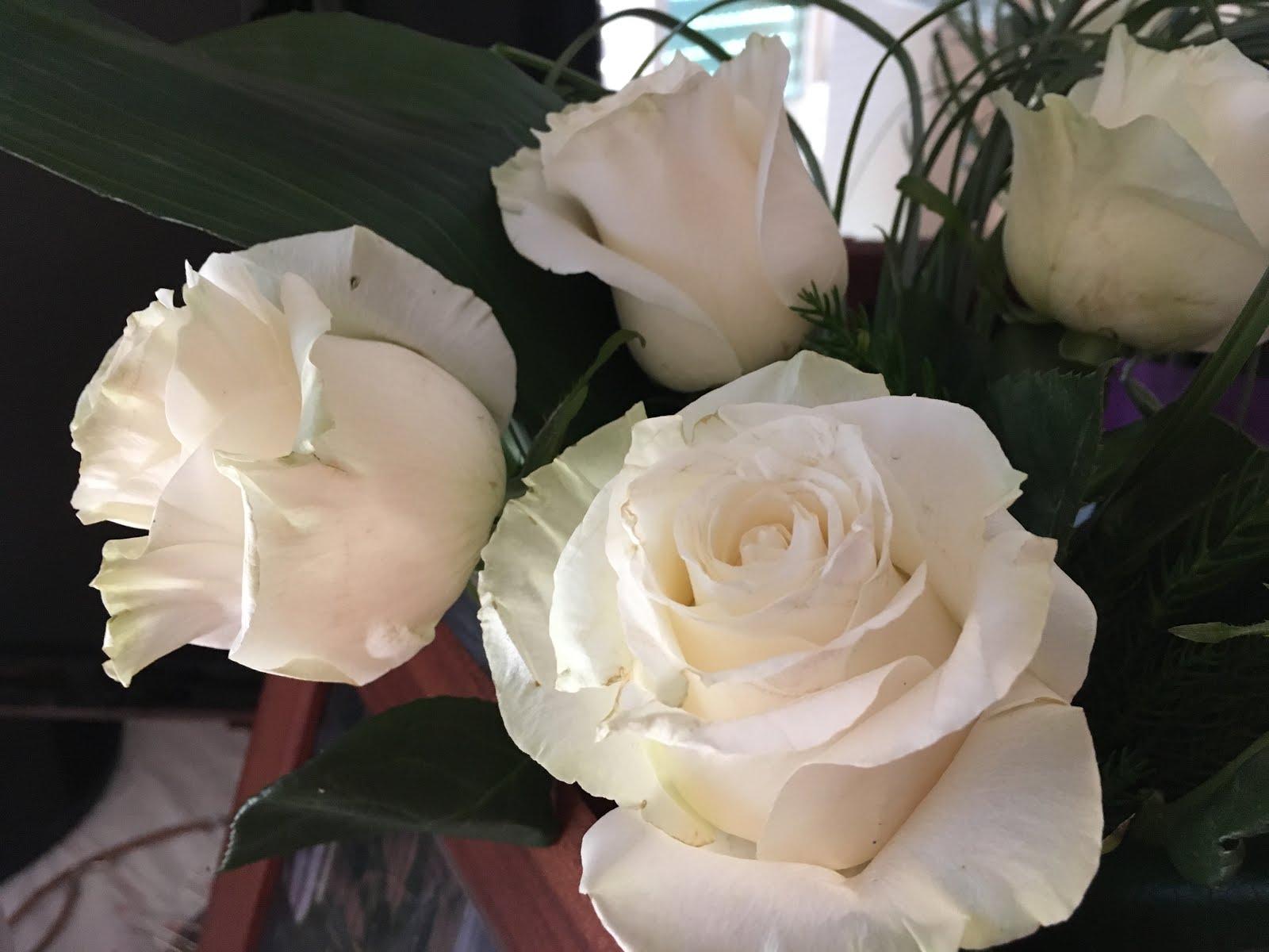 Que hermoso es sentir el Amor en cada instante de la vida