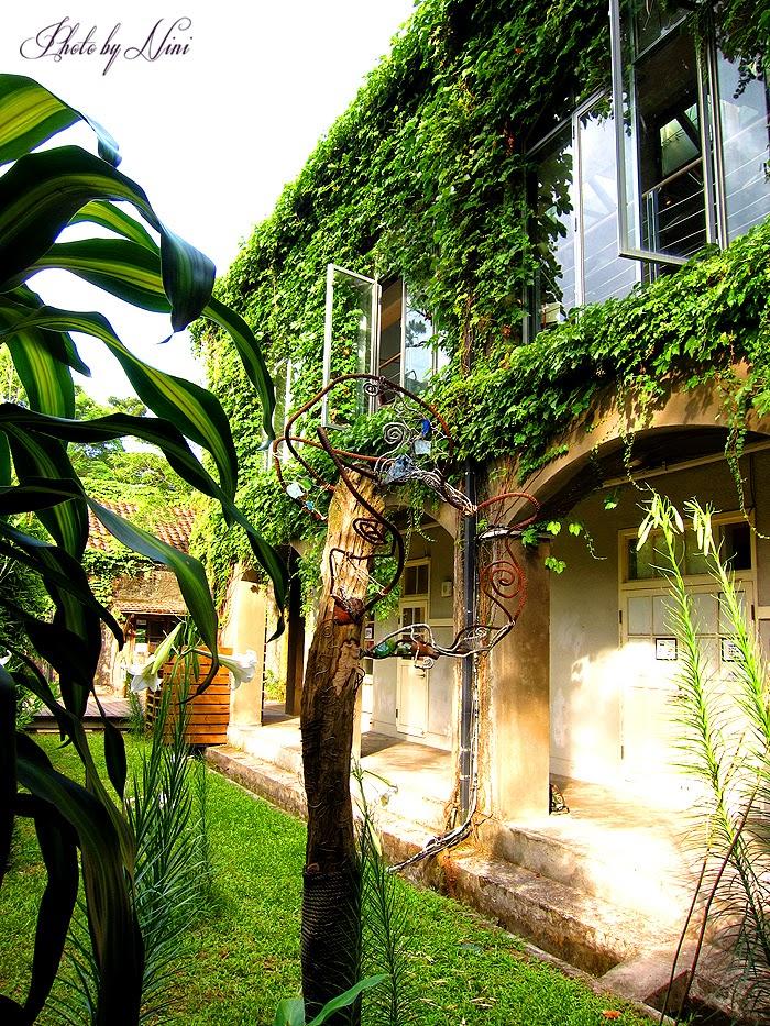 【花蓮市景點】松園別館。穿梭在百年松林的藝術人文之旅
