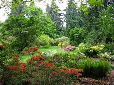 http://www.statesymbolsusa.org/Washington/state-arboretum-WA.html