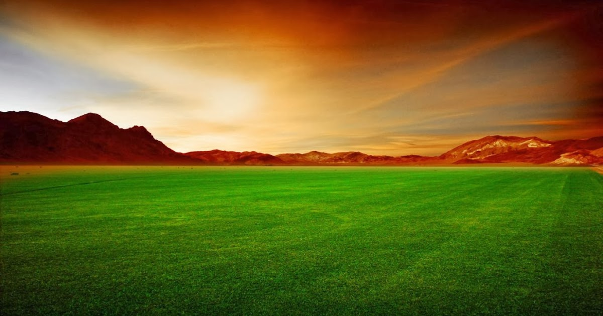 Grass Field Wallpapers Hd Wallpapers Funny Videos