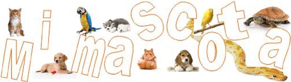 Mi mascota, blog de mascotas