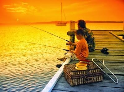 Giá máy câu cá shimano 6000 loại rẻ nhất bao nhiêu tiền