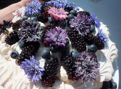Buy cornflowers from http://maddocksfarmorganics.co.uk/crystallising-flowers/