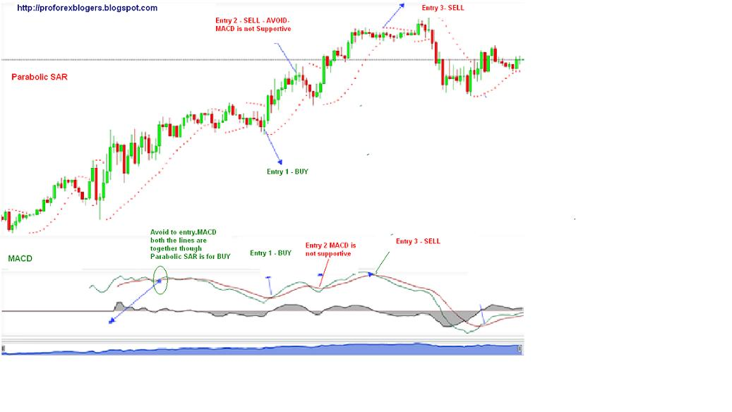 Strategy forex daily