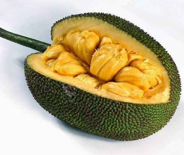 сезон мангустина в тайланде
