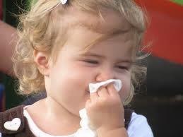 Faktor Pemicu Alergi pada Tubuh
