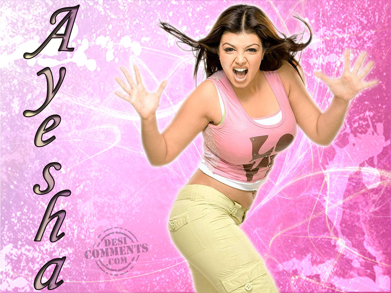 Wallpapers Gallery: Ayesha Takia Hot Photos