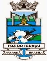 Logo PMFI