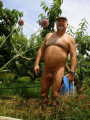 daddie bear - naked uncut gay - bear daddy gay