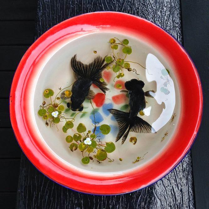 Pintura 3D: Peixe preto