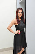 Aksha Glam pics at Bengal tiger audio-thumbnail-16