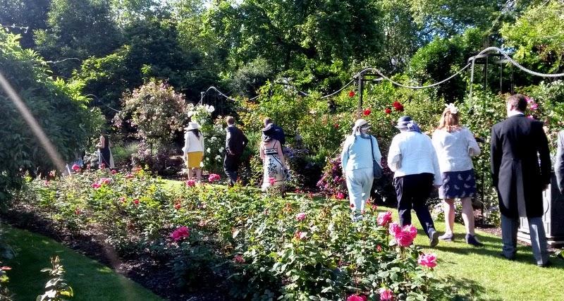 The rose gardens at Buckingham Palace