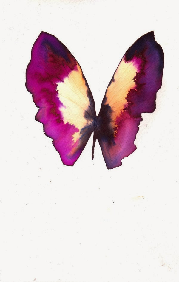 magenta ink painting pink butterfly colour scheme