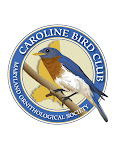 The Bluebird is Caroline's County's official Bird