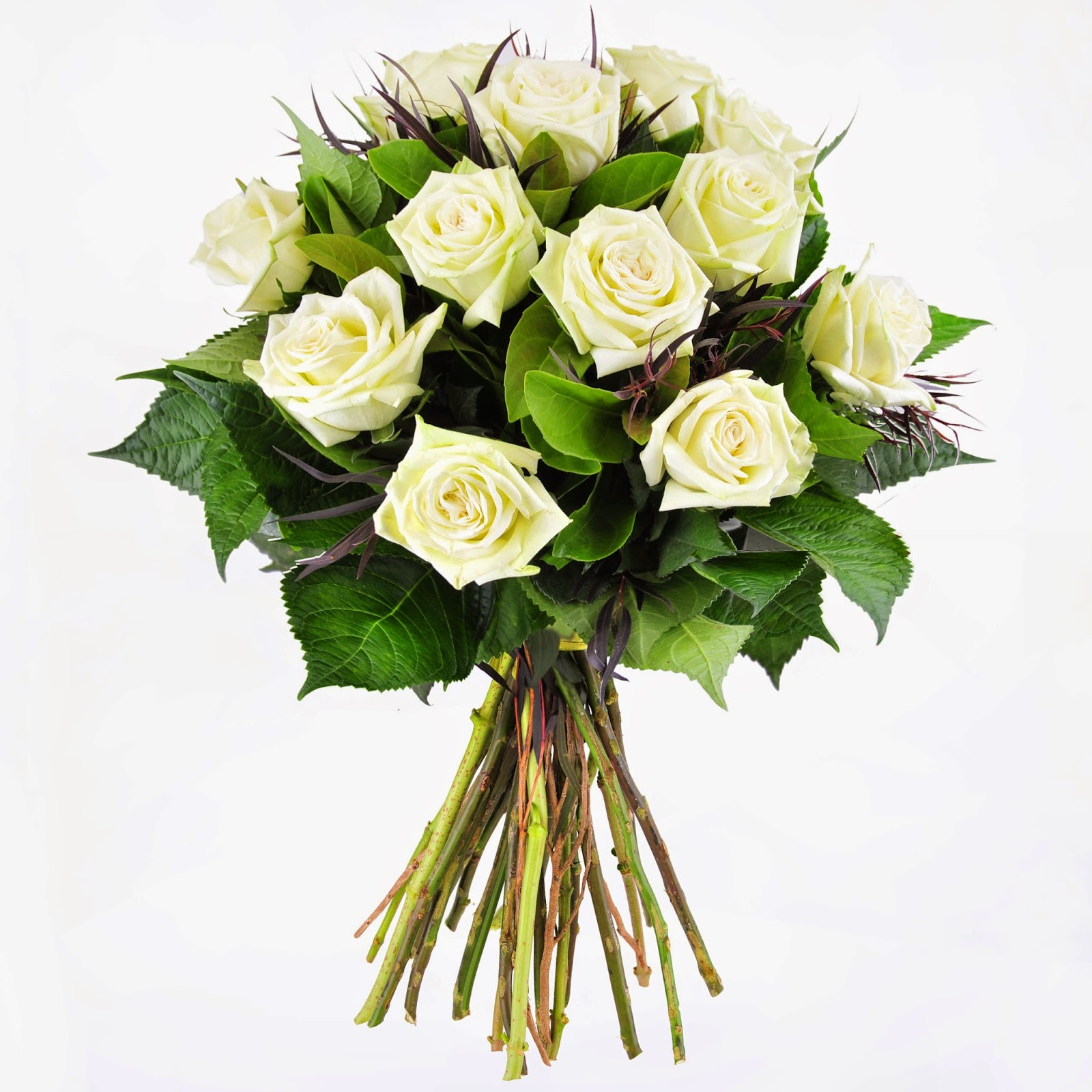Urban flower sending sympathy flowers sympathy card messages bouquet of 12 green tea roses complemented with spear grass and greenery izmirmasajfo