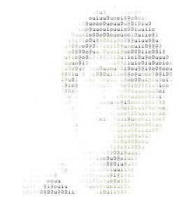 HOW TO : Convert Images And Texts Into ASCII Artwork