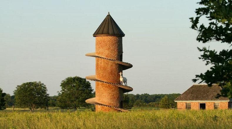 Las torres para cabras en Sudáfrica