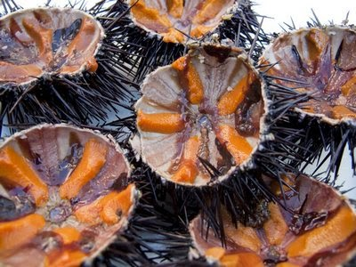 Vietnamese Sea Urchin Dishes