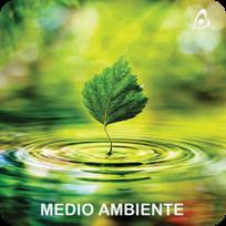 Empresa de medio ambiente - Consultoría Ambiental - Estudios Medioambientales
