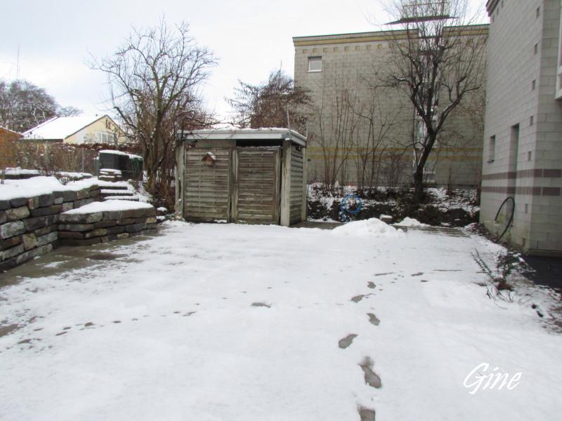 Au jardin de gine hiver au jardin for Hiver au jardin