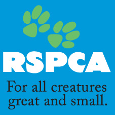 RSPCA Dog Wash fundraiser