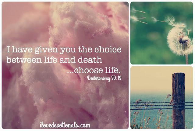 Deuteronomy 30:19 Devotional on choosing life