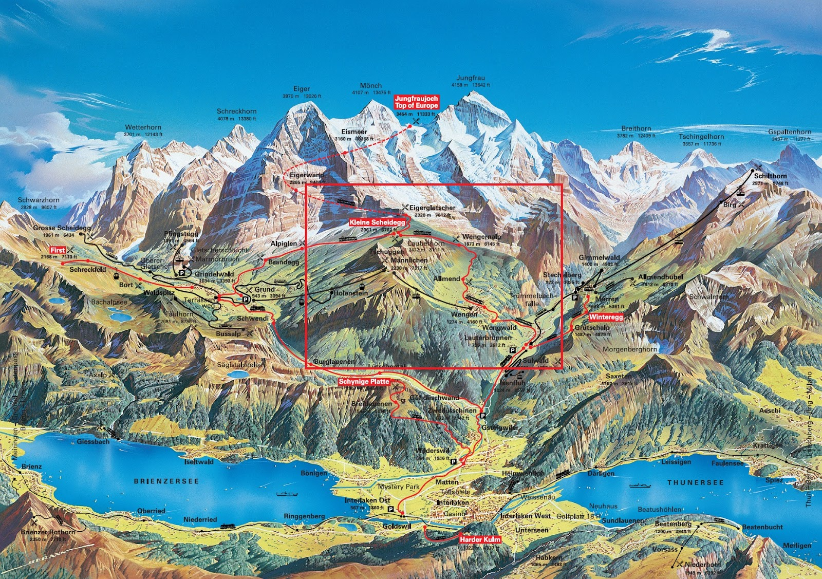 The Ecosystem of the Swiss Alps: Swiss Alps: Alpine Glacial Ecosystem