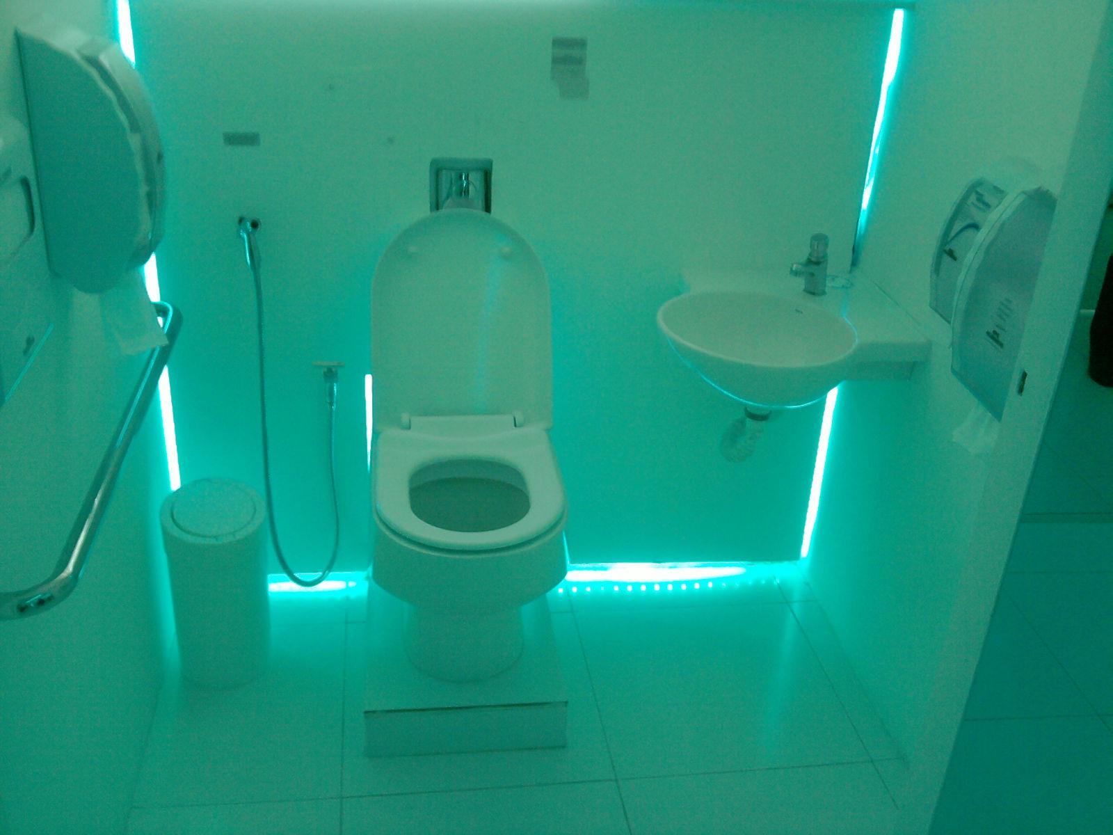 Banheiro para deficiente fisico #005456 1600 1200