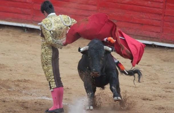 Ley de Protección Animal no incluyen las corridas de toros